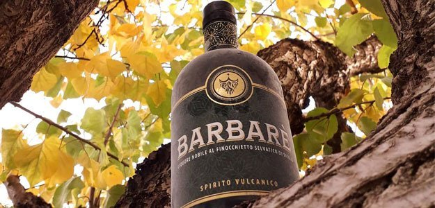 Liquore Barbarè