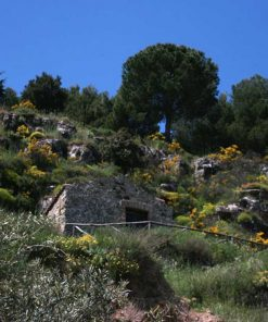 Pecorino-crotonese-stagionato-in-grotta