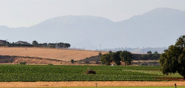 Myfarmitalia - Azienda Agricola Siciliano